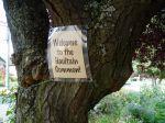 Welcome to Haultain Common garden Victoria BC
