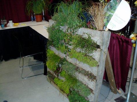 NWFGS - palette planter