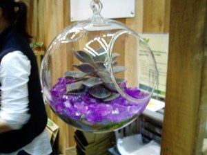 NWFGS - glass ball planter