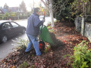 mulching the boulevard