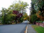 McRae street Fall colour, garden Victoria BC