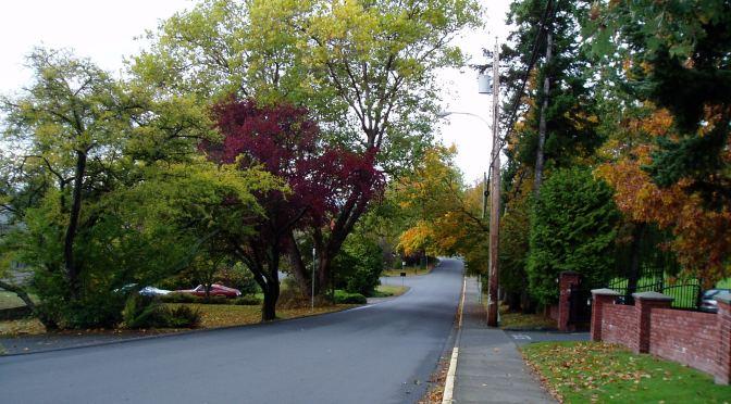 McRae street Fall colour, garden Victoria, Vancouver Island, BC, Pacific Northwest