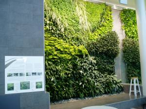 green living wall garden- Edmonton International Airport 2