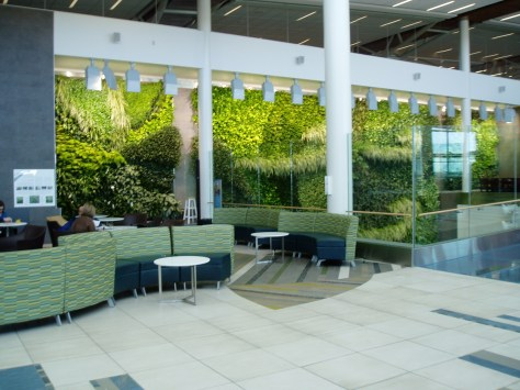 green living wall garden- Edmonton International Airport 1