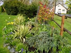 full sun garden in early april