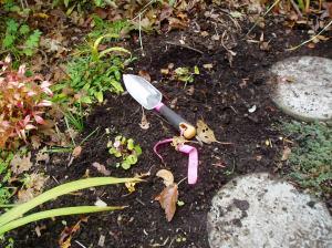 tool in the garden