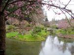 The Japanese Garden on Mayne Island