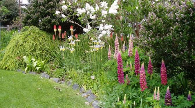 May Garden Activities