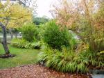 fall garden color autumn Victoria BC