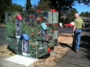 utility box wrapped with birdhouse photo garrden Victoria BC Pacific Northwest