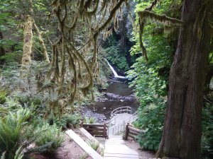 garden Victoria, Vancouver Island, BC, Pacific Northwest