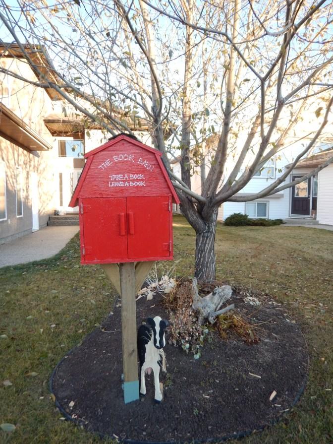 Street Library in Grande Prairie