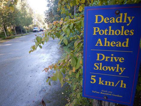 Tofino potholes Tofino Botanical Gardens garden Victoria, Vancouver Island, BC, Pacific Northwest