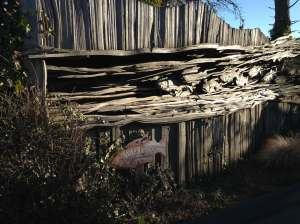 salmon wooden fence