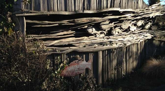 salmon wooden fence, garden Victoria BC Pacific Northwest