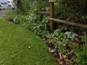 garden Victoria, Vancouver Island, BC Pacific Northwest
